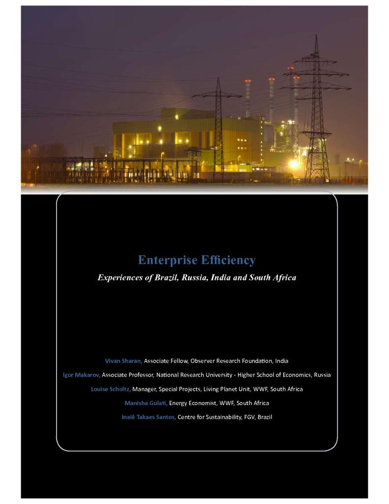 thumbnail of Enterprise-Efficiency