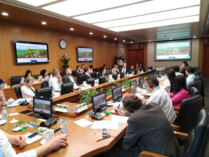 Roundtable on External Reviews: Facilitating International Green Bond Investments in China