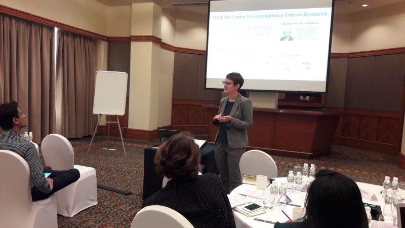 Workshop: Safeguarding environmental integrity in the Indian Green Bond market